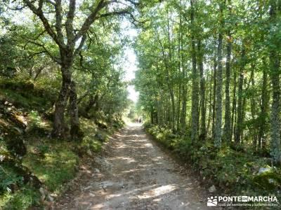 Montaña palentina;rutas a pie granja de san ildefonso segovia senderista rutas en bici madrid